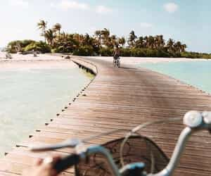 beach, paradise, and sun image