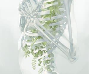 art, anime, and skeleton image