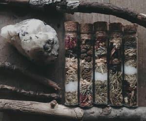 bruxa, vidrinhos, and flores image