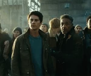 gif, the maze runner, and dylan o'brien image