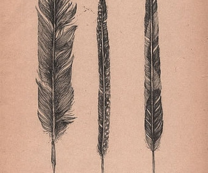 feather and drawing image