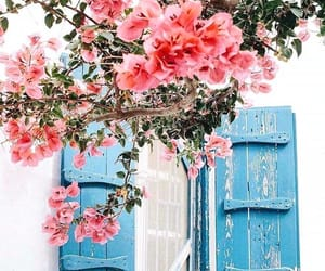 beautiful, live, and blue image