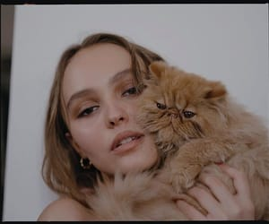 cat, model, and lily rose depp image