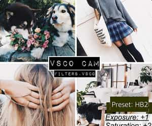 vsco, filter, and photo image