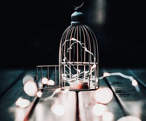 cage, lights, and dazzling image