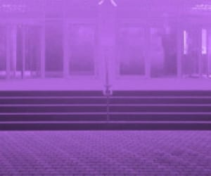 header and purple image