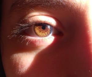 brown eyes, honey eyes, and eyes image