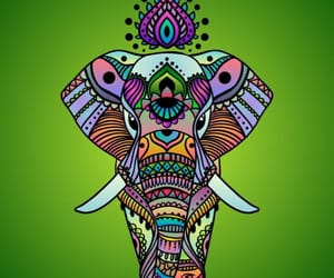 animal, art, and elephant image