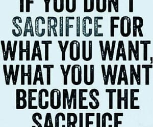 blue, sacrifice, and motivation image