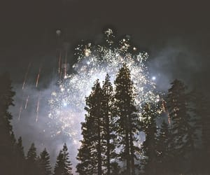 fireworks, forest, and night image