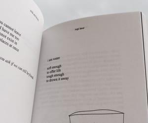 art, books, and peace image