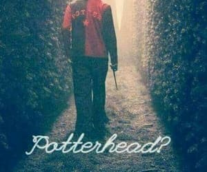 harry potter, potterhead, and always image