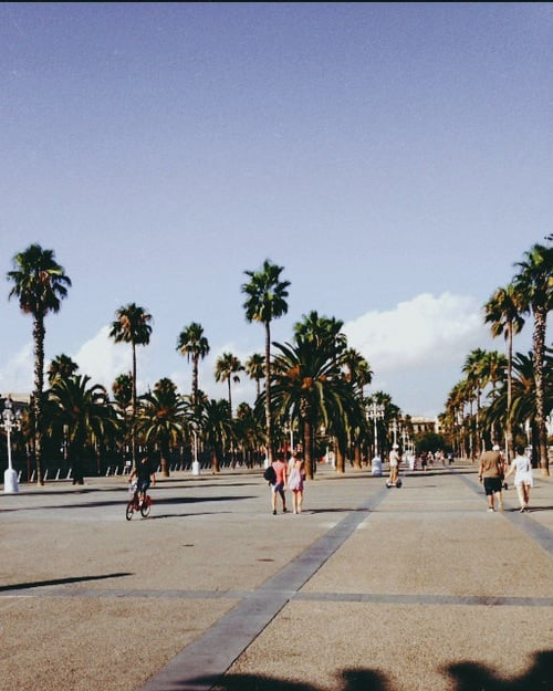 beach, place, and barcelone image