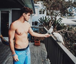 grayson dolan, dolan twins, and australia image