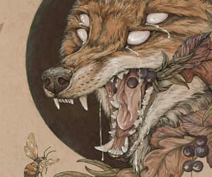 bee, fox, and illustration image