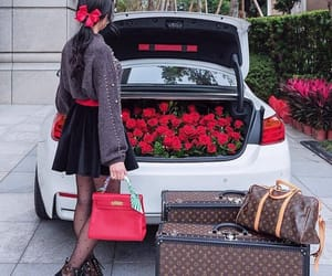 luxury and roses image