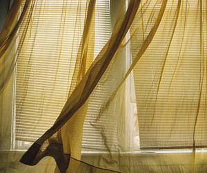 yellow, curtains, and window image