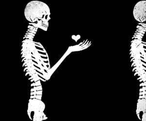 gif, heart, and skeleton image