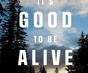 alive, good, and wallpaper image