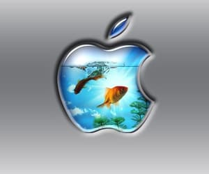 apple, iphone, and ocean image