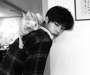 black and white, korean, and blogger image