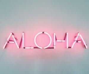 Aloha, pink, and light image