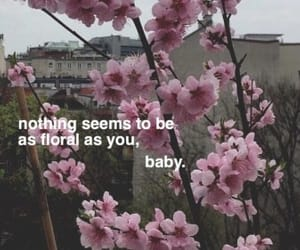 baby, background, and flowers image