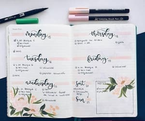 flowers and week image