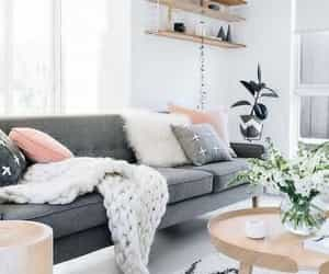 decor, design, and grey image