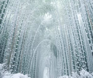 beautiful, snow, and travel image