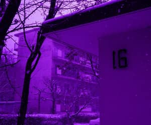 colors and purple image