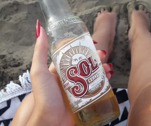 alcohol, beach, and beer image