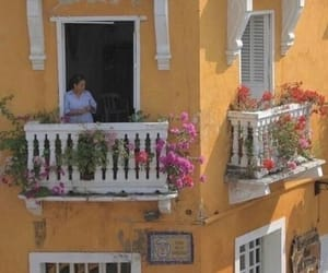 aesthetic, balcony, and flowers image