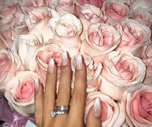 nail inspo, nail goals, and roses+flowers+beauty image