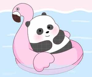 cartoon, panda, and we bare bears image