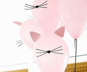 cat, pink, and balloons image