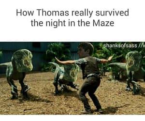funny, Jurassic Park, and thomas image