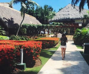 paradise, travel, and republica dominicana image
