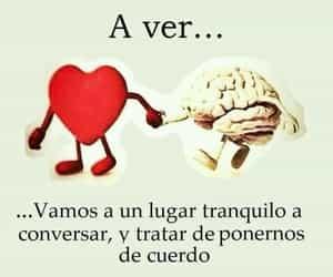 vida, corazón, and cerebro image