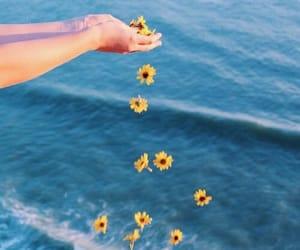 flowers, sea, and ocean image