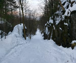 hike, path, and winterwonderland image