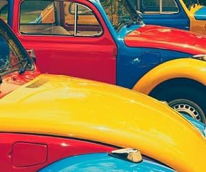 beetle, car, and volkswagen image