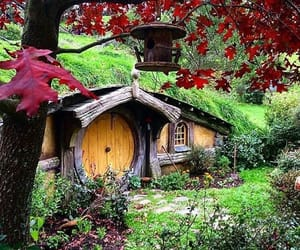 door, garden, and grass image
