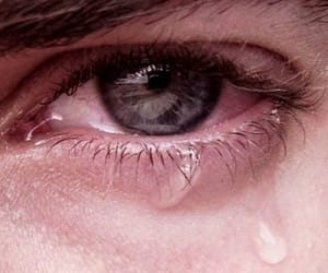 eyes, header, and sorry image