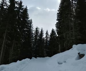 austria, ice, and snow image