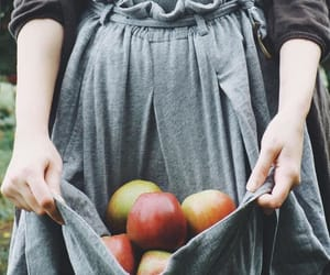 apples, apron, and blue image
