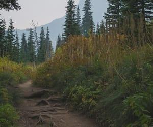 adventure, explore, and Glacier National Park image
