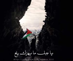 arabic, design, and palestine image