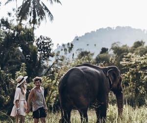 Sri Lanka, summer, and fashion bloggers image