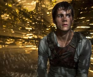 the maze runner, dylan o'brien, and Hot image